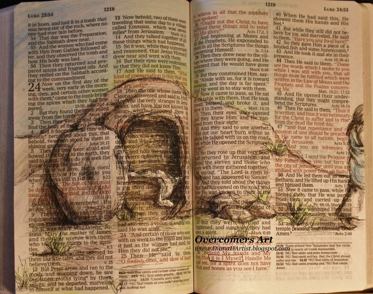 Drawn on Bible